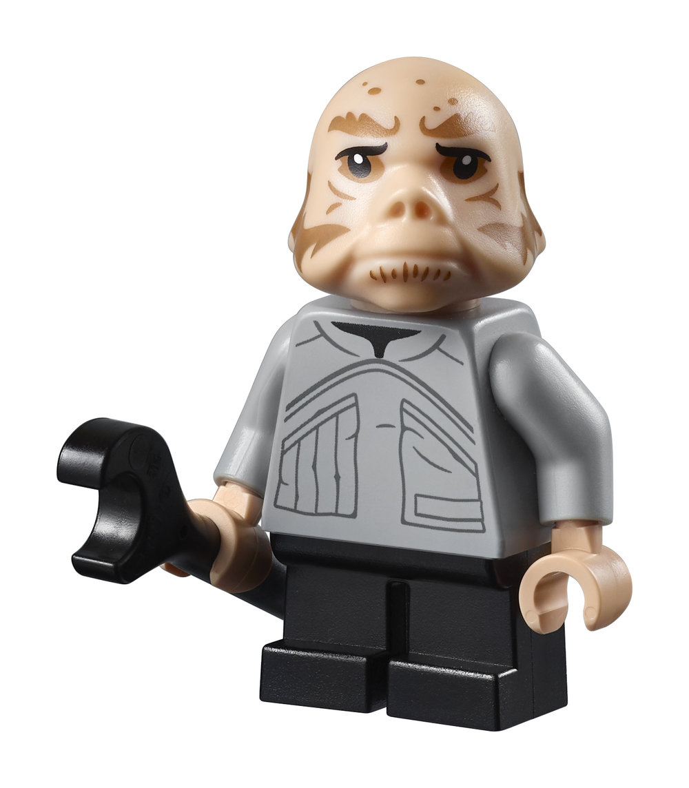 75222_Top_Panel_Minifigure_01.jpg
