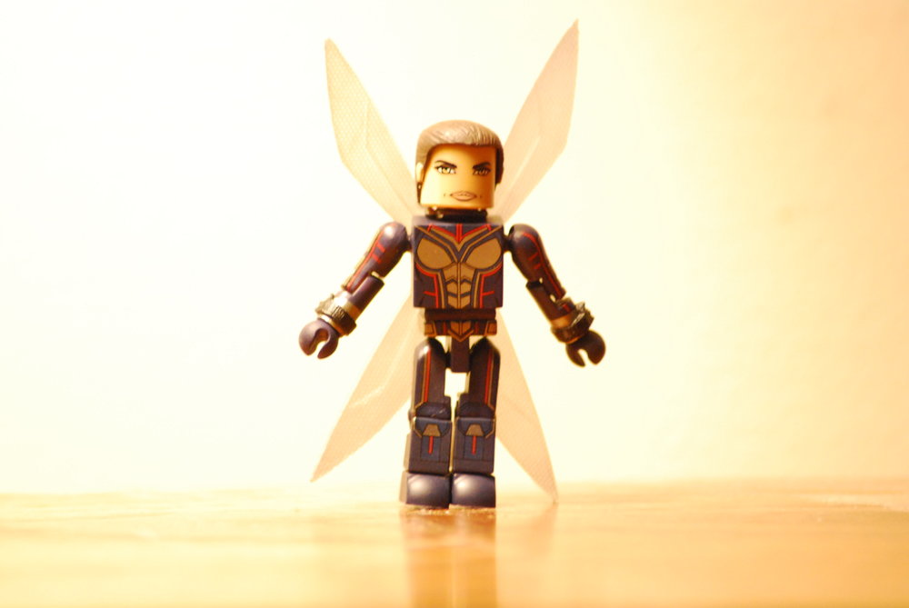 The Wasp unmasked