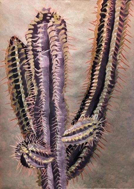 Silver Cactus