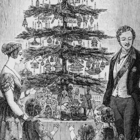 Contesting the Christmas Tree - Re-Presenting the Representational Tree