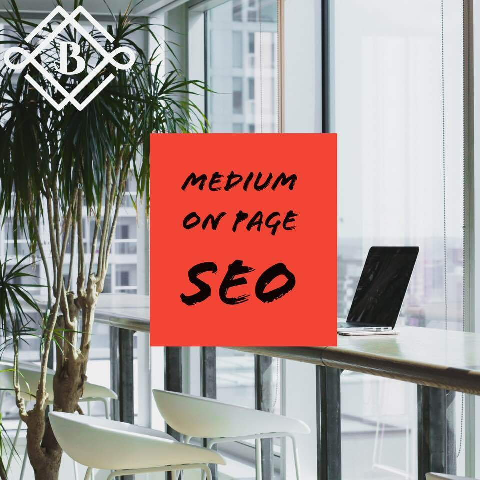 Medium On Page SEO Package