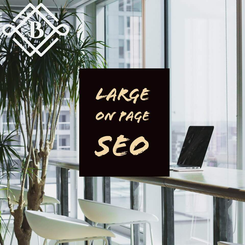 Large On Page SEO Package