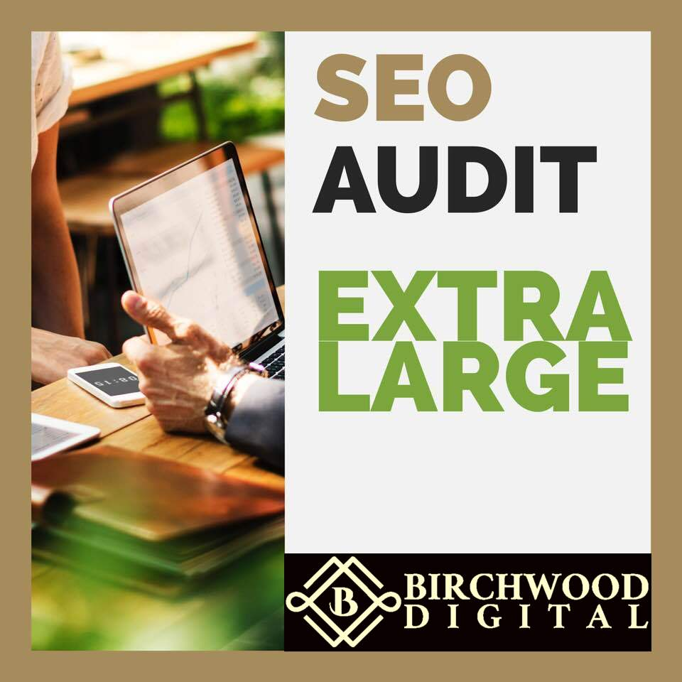 Extra Large SEO AUDIT - Get a comprehensive SEO audit for a site with under 500,000 pages indexed, to see current index type the following into Google: site:nameofsite.com and look at number of results.