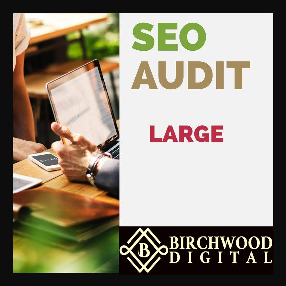 Large SEO AUDIT - Get a comprehensive SEO audit for a site with under 20,000 pages indexed, to see current index type the following into Google: site:nameofsite.com and look at number of results.