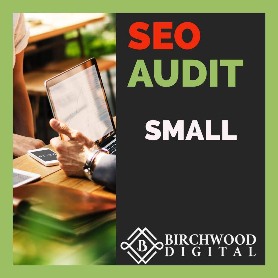 SMALL SEO audit - Get a comprehensive SEO audit for a site with under 500 pages indexed, to see current index type the following into Google: site:nameofsite.com and look at number of results.
