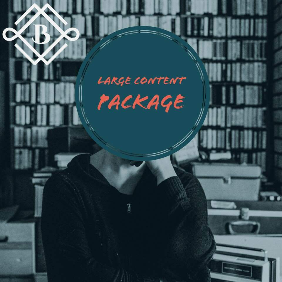 LARGE Content Package - Recieve 20 Blog Posts all designed to help bring in more natural traffic and increase website's relevancy to search engines!