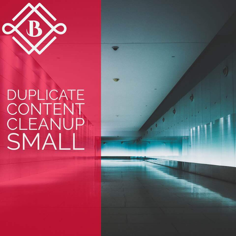 SMALL Duplicate content cleanup - Optimize 2-4 landing pages with some the following: canonicals, noindex, 301's, 410's, etc.