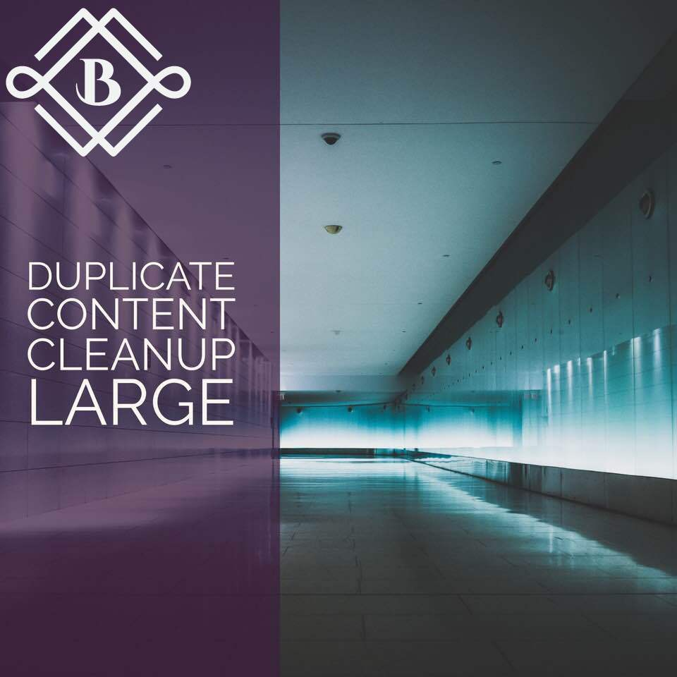 Large Duplicate content cleanup - Optimize 10-19 landing pages with some the following: canonicals, noindex, 301's, 410's, etc.