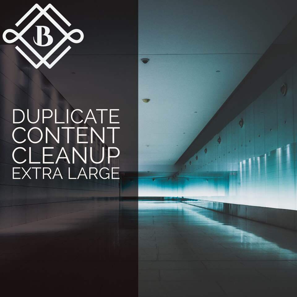 Extra Large Duplicate content cleanup - Optimize 20-30 landing pages with some the following: canonicals, noindex, 301's, 410's, etc.