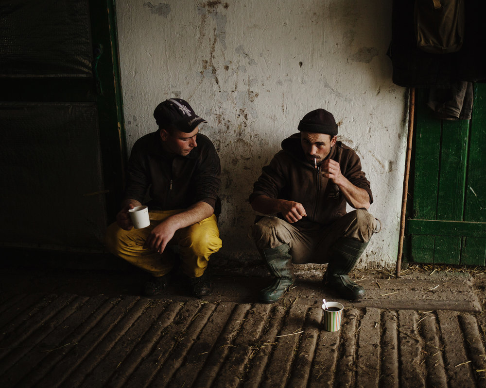 "Ceadir-Lunga - In Konstantin Kelesh stud farm, workers during a ""coffee and cigarettes break""."