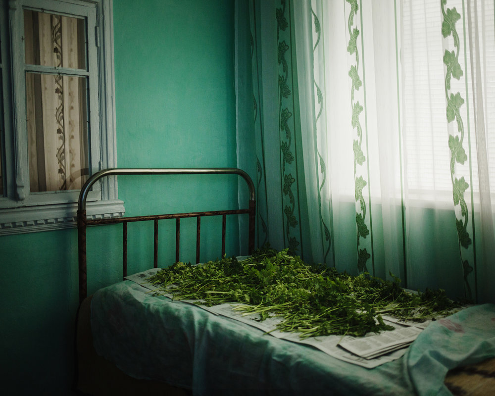 Djoltaï - Some greenery drying in a house.