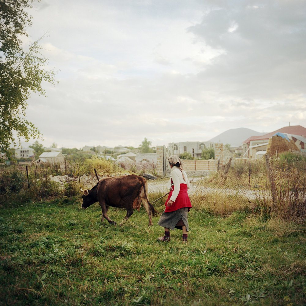 Cirush fetches her cow in the evening. Her husband and one of her sons work in Russia. Her other son is doing his military service in Nagorno-Karabakh. So Cirush make her own way and takes care of her stepmother, aged 90.