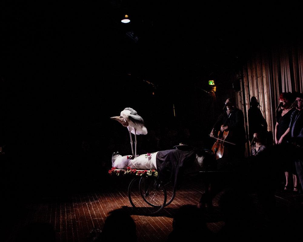 myop_pebrel_theatre_50.jpg