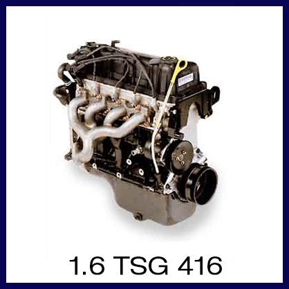 1.6 TSG 416.jpg