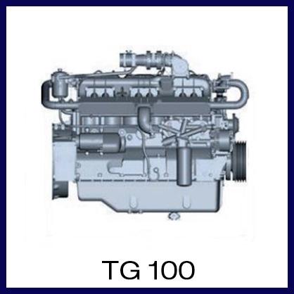 TG100.JPG