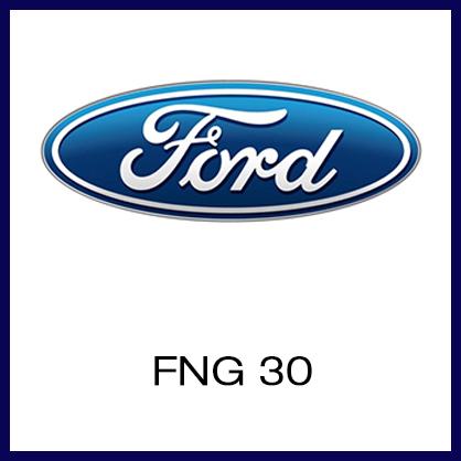 FNG 30.jpg