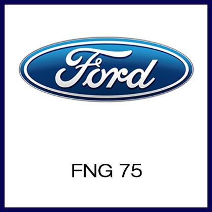 FNG 75.jpg