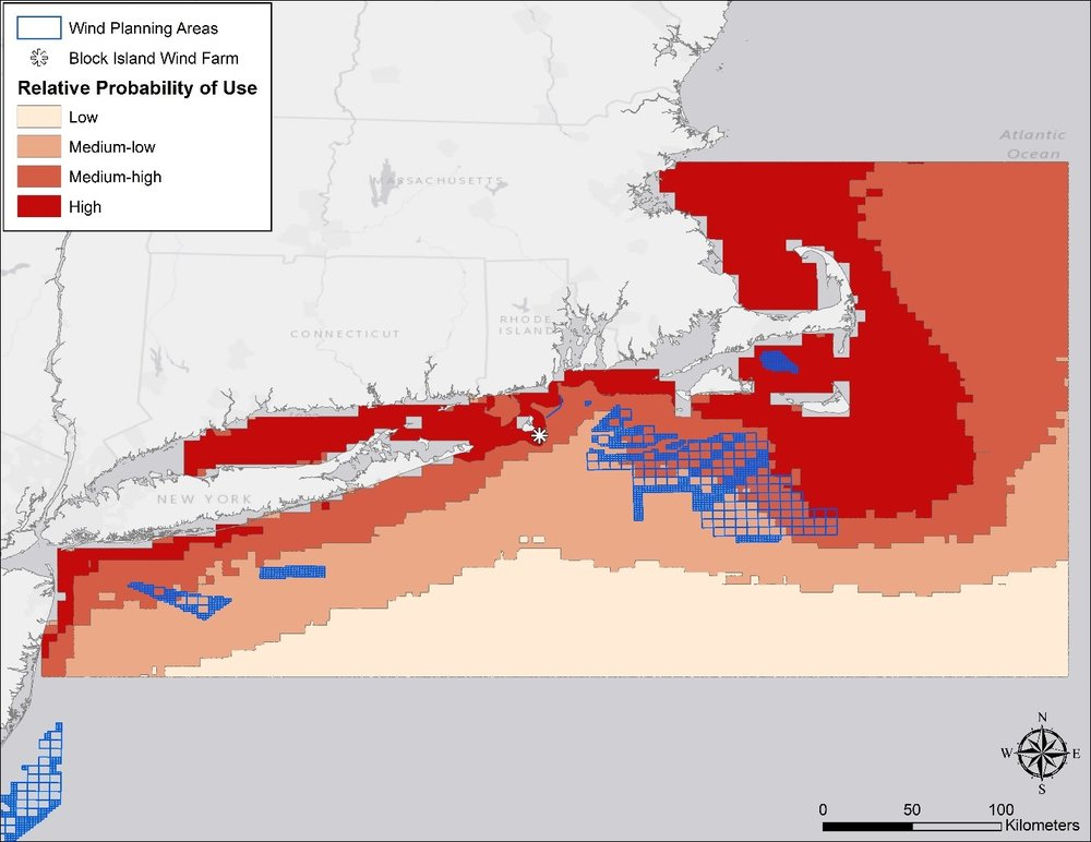 Fig. 1. Estimated probability of use by adult female White-winged Scoters in nearshore and offshore waters in southern New England based on movements of satellite-tagged birds. For information on the most current wind energy areas, visit  BOEM: Offshore Wind Energy