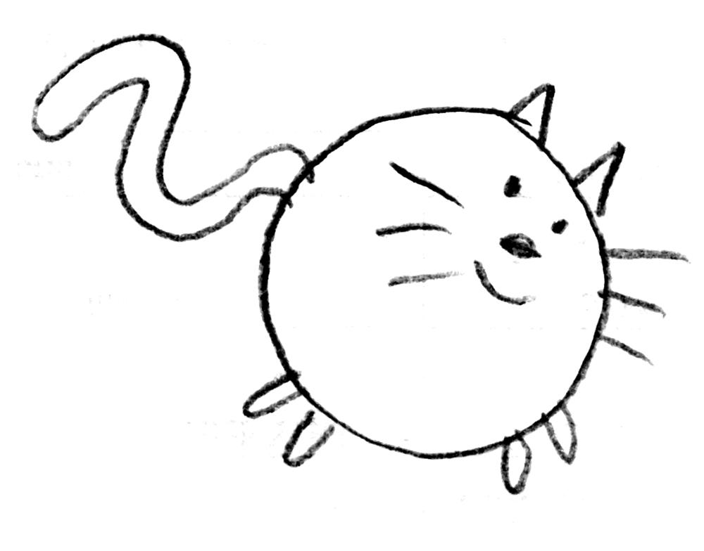 circular cat
