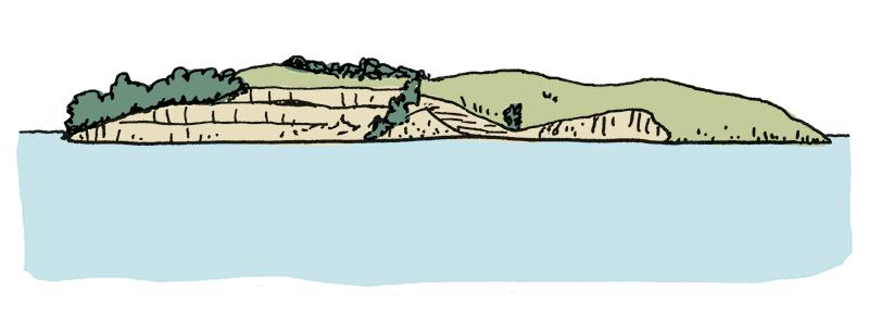 Quail-Island-clip-Doodle-R2BC-38.png