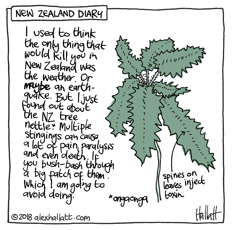 Doodle-NZdiary-26.png