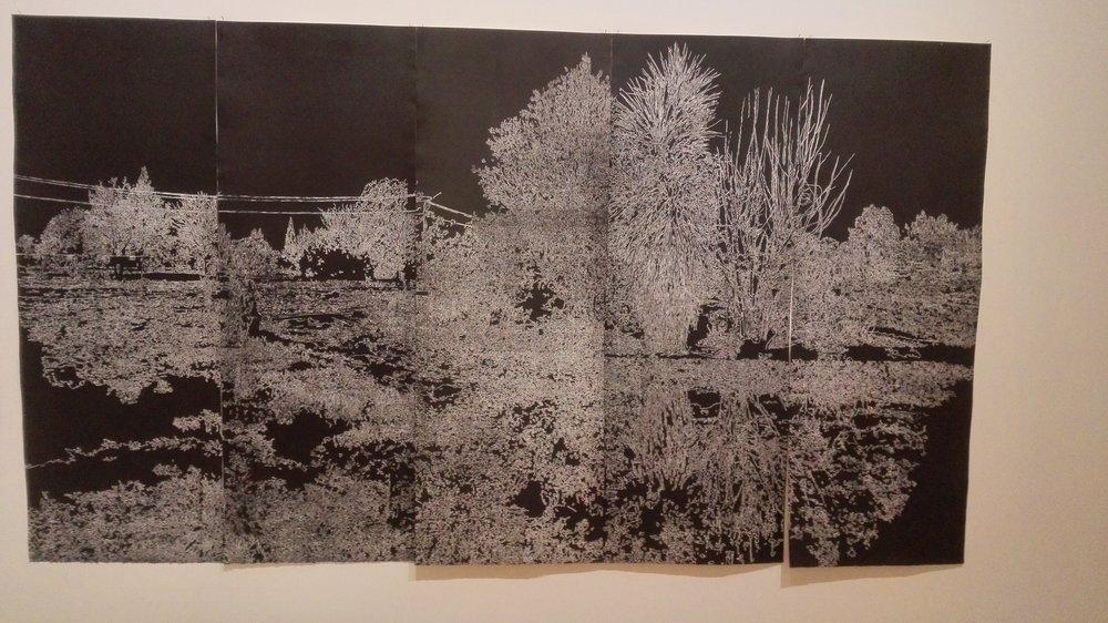 oamaru-forrester-gallery-fiona-van-dyen.jpg