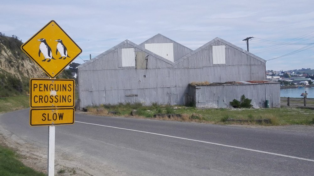 Oamaru-corrugated-penguin-sign.jpg