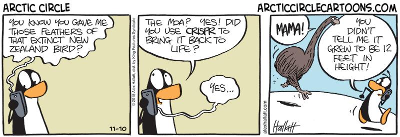 Arctic Circle cartoon about the extinct New Zealand moa