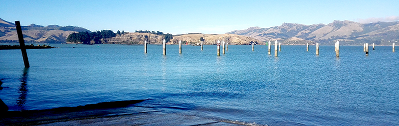 The view of Quail Island from Naval Point, Lyttelton - a good boat ramp to leave from