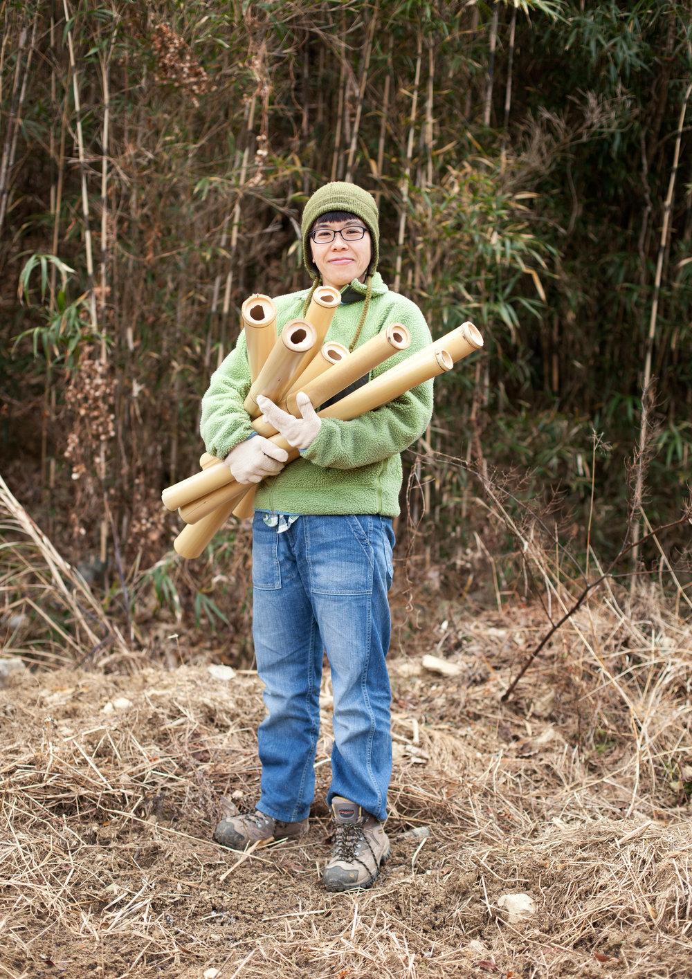 bambooer.jpg