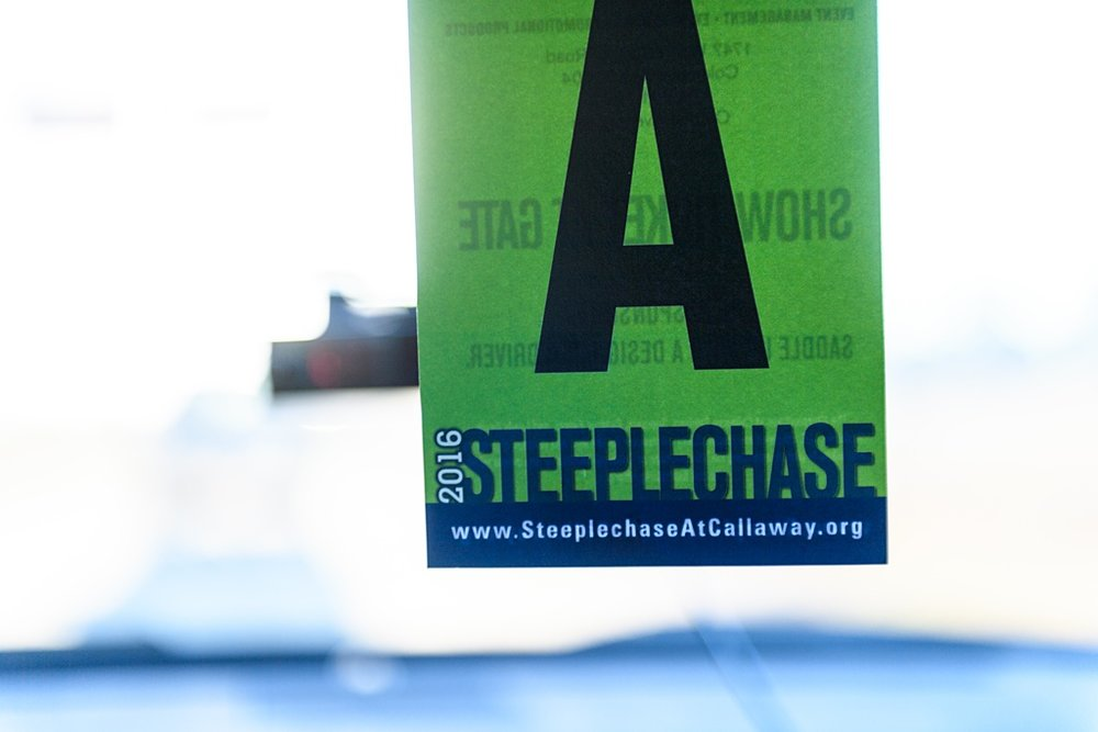 steeplechase-00001.JPG
