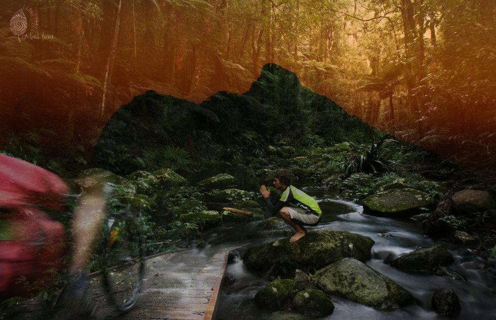Rainforest_Ride_montage_orange3.jpg
