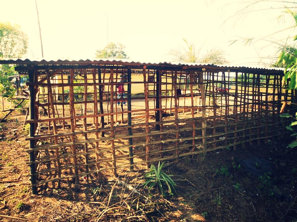 SEED Farms - Farming