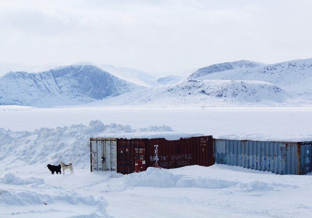 Dogs in the snow, Qikiqtarjuaq. May 2018