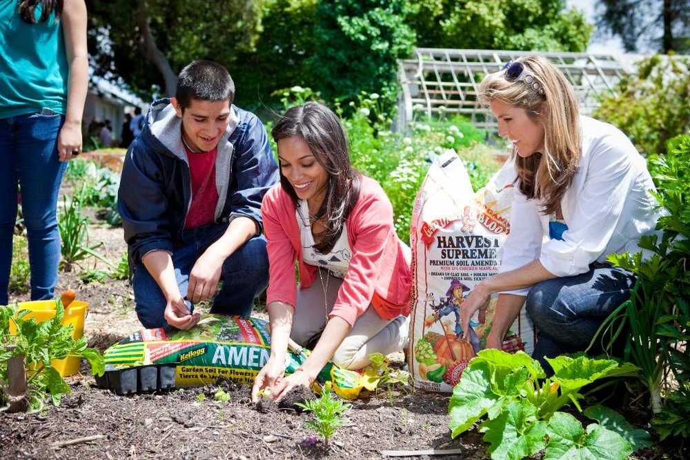 rosario_planting.jpg