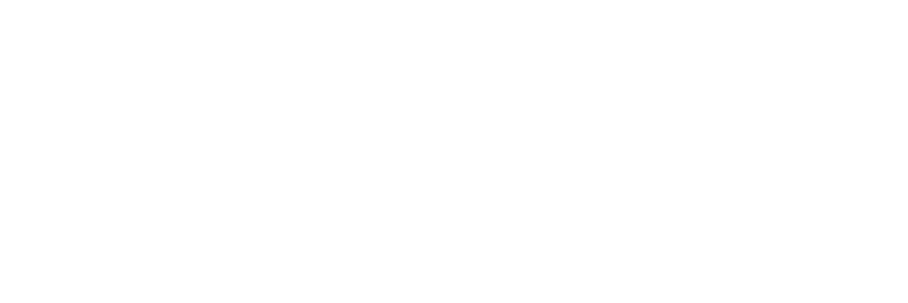 AmirDanielle_Photography_Logo_White.png