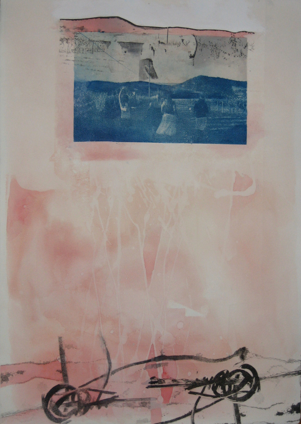untitled (pinkandblue) , 2008, cyanotype, xerox transfer, watercolor on paper, 20 x 26 inches