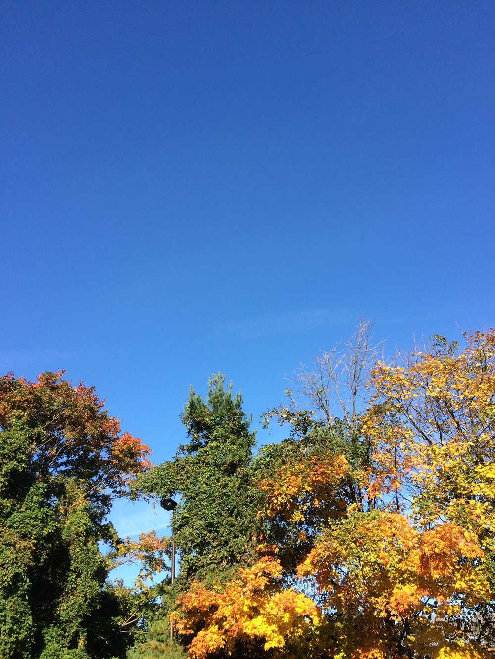 Not a cloud in the sky.