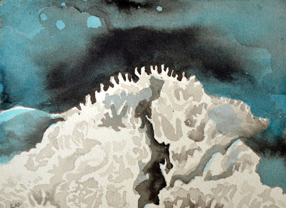 Coral Study 3