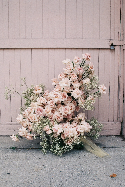floral - portfolio