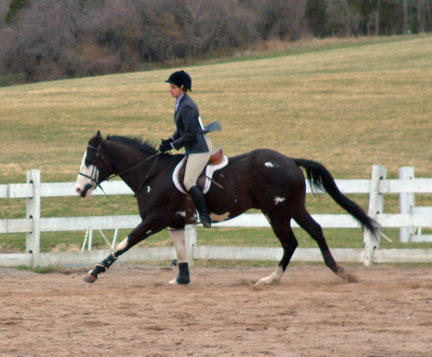 Competing in the Intercollegiate Horse Show Association (IHSA).
