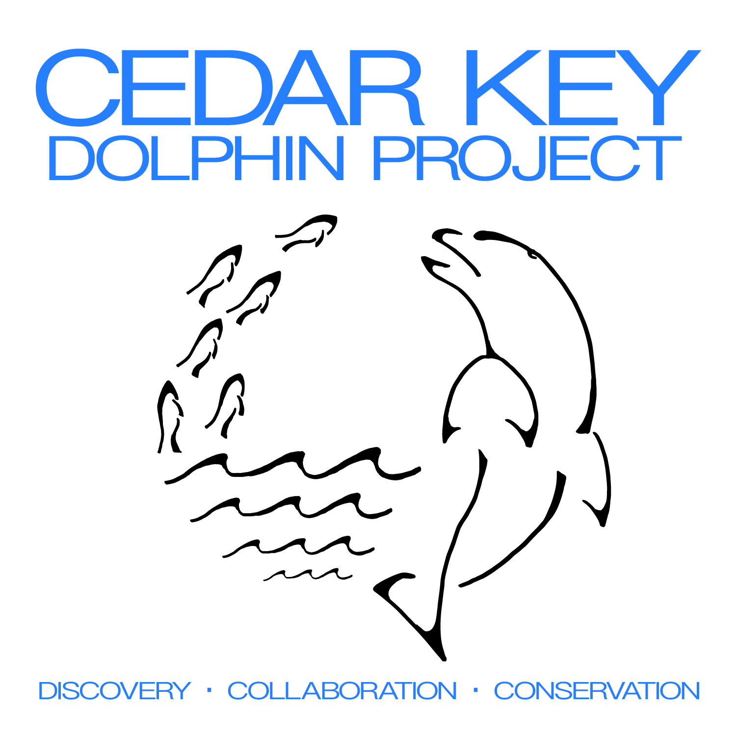 Cedar Key Dolphin Project