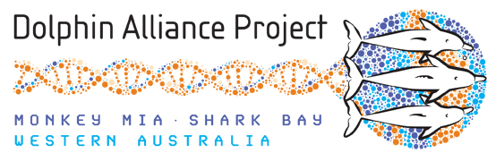 Dolphin Alliance Project