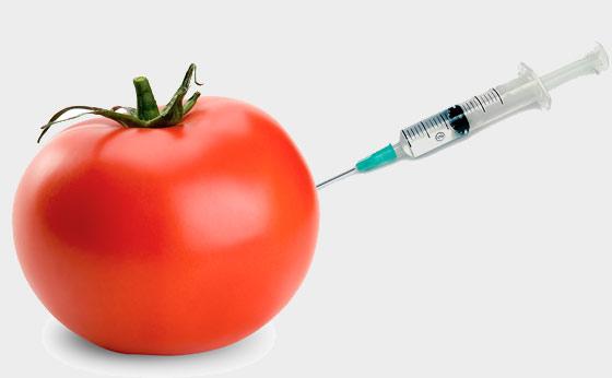 gmo-genetically-engineered-food