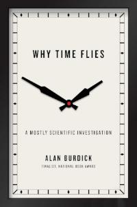 Why Time Flies.jpg