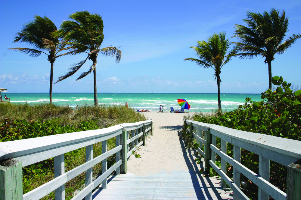 1194984144_vf_north_beach.jpg