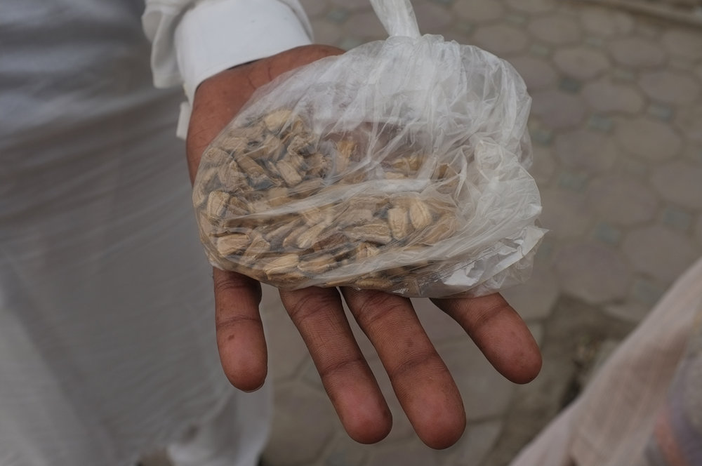 Seeds from Pakistan