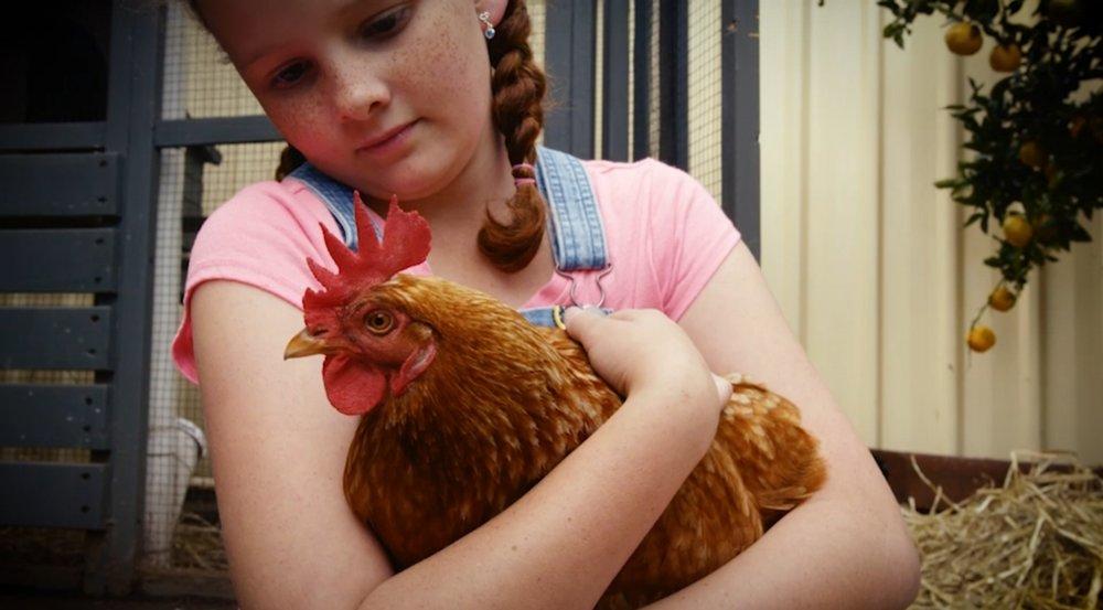 NATURE HEARTS - Chicken Girl ALTERNATIVE.jpg