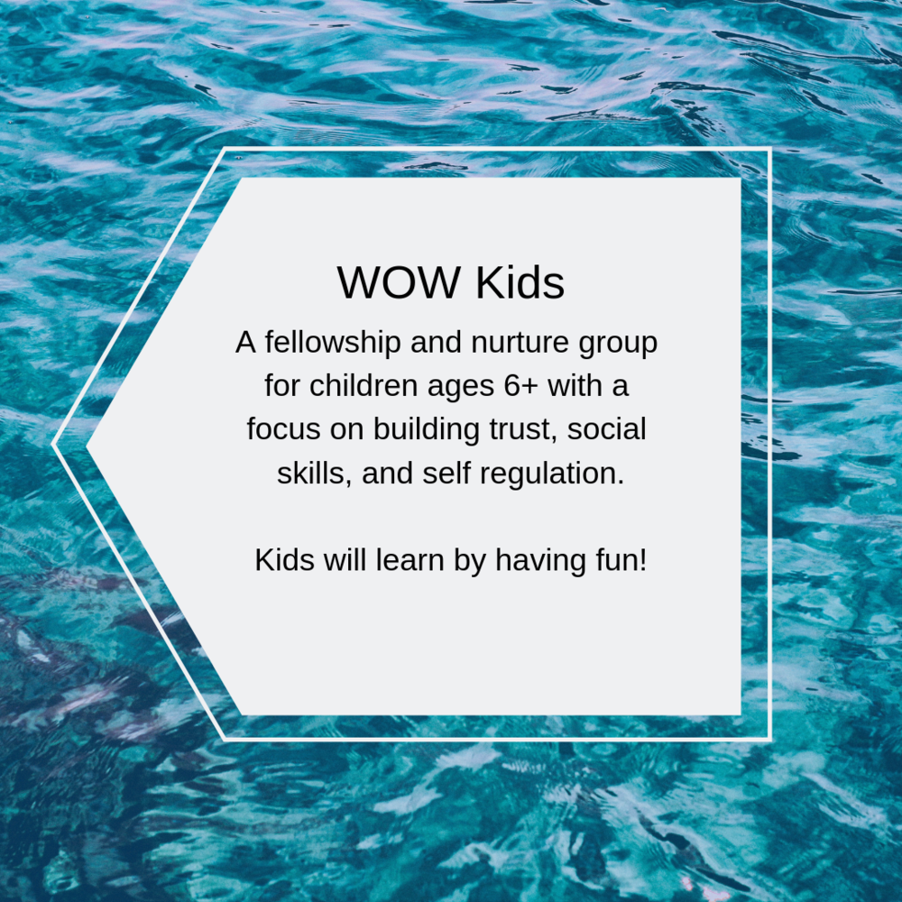 For our next learning series our WOW Kid's will meet on the following dates:  4/9 - Rules and Safety (and why we have them) 4/23 - Engine Plates and Self-Regulation 5/14 - Giving Voice (Why my words are important) 5/28 - Please and Thank you (Why manners matter)