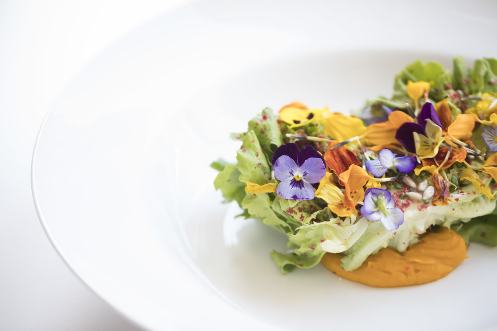 Winter Garden Salad with Blossoms_First_Fall 18 GP Tasting_BH_44.JPG